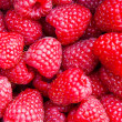 Fresh raspberries — Stock Photo #33815419
