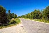 Lonely road — Foto de Stock