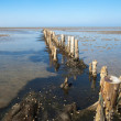 Stock Photo: Wooden breakwater