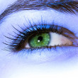 Stock Photo: Green eye