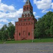 Moscow Kremlin Nabatnaya tower - Stock Photo