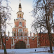 Stock Photo: Donskoy monastery