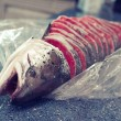 Stock Photo: Red fish