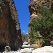 Samaria Gorge at Crete - Stock Photo