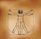 Vitruvian man with crosshatching and sepia tones — Stock Vector