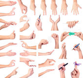 Set of woman hands isolated on white background — Stock Photo