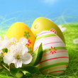 Colorful Easter Eggs and Flowers - Stock Photo