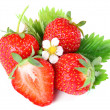 Strawberry berry with green leaf and flower - Zdjęcie stockowe