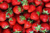 Fondo de fresas fresca — Foto de Stock