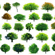 Collection green trees — Vector de stock #17152565