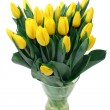 Yellow tulips isolated on white — Stock Photo #2417074