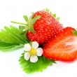 Fresh ripe strawberry on white background - Stock Photo