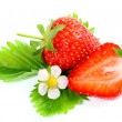 Fresh ripe strawberry on white background - Stockfoto