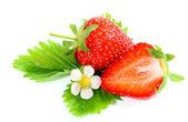 Frische reife erdbeeren auf weißem hintergrund — Stockfoto