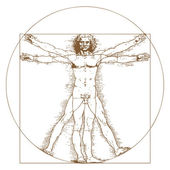 Vitruvian Man by Leonardo Da Vinci — Stock Vector