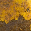 Rusted metal surface — Stock Photo #2285532