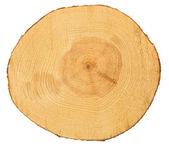 Sawn pine wood — Stock Photo