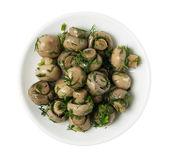 Plate with marinated mushrooms — Stock Photo