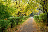 Walking path in autumn Park — Stock Photo