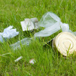 Garbage on the green lawn. Environmental pollution — Stock Photo