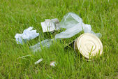 Garbage on the green lawn. Environmental pollution — Stok fotoğraf
