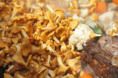 Chanterelle — Stock Photo