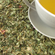 Cup of tea on tea herbs — Stock Photo