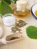 Bath essence, cream and tincture with hamamelis — Stock Photo