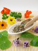 Herbs salt with edible flowers — Stock Photo