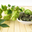Loose tea with hops — Stock Photo