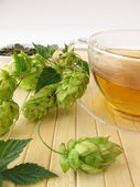 Tea with hops — Stock Photo