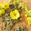 Loose tea with mullein — Stock Photo