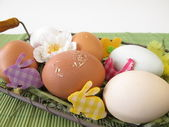 Eggs in natural white, brown and green colors in easter basket — Stock Photo