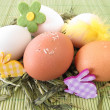 Natural colored eggs in easter nest - Stock Photo