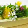 Bouquet of wild herbs on the tray — Stock Photo
