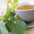Linden flowers tea — Stock Photo