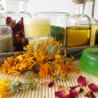 Stockfoto: Ingredients and utensils for homemade cosmetics