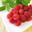 Stock Photo: Freshly picked raspberries