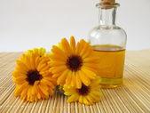 Marigold oil — Stock Photo