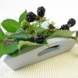 Still life with wild blackberries — Stock Photo