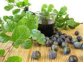 Sloe fruits liquor — Stock Photo