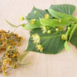 Linden twigs with flowers and dried linden flowers — Stock Photo