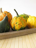 Autumnal decoration with ornamental gourds — Stock Photo