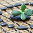 Stockfoto: Zen pebbles