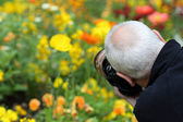Photographer and flowers — Stock Photo