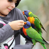 Girls and parrots — Stock Photo