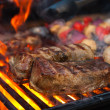 Grilled meat — Stock Photo #41067321