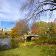 NYC Central Park — Stock Photo