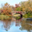 NYC Central Park — Stock Photo #16215001