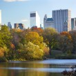 New York City Central Park — Stock Photo #16215019